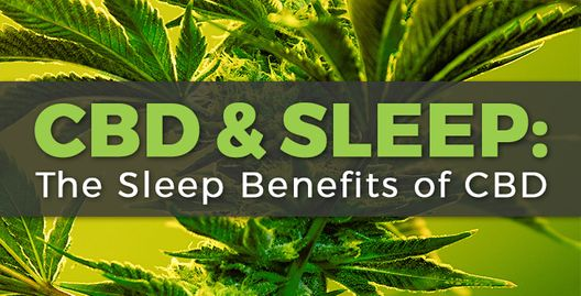 Seizures, Calming & Sleep